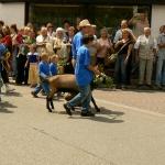 11.-13. Juli in Heiligkreuzsteinach>>A. B., Bild 3343