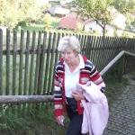 Stiegenwallfahrt nach Wollaberg v. G.B, Bild 2060