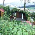 Stiegenwallfahrt nach Wollaberg v. G.B, Bild 2090