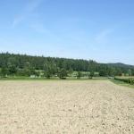 4. Ostbayerische Böllertreffen - Chambthaler Sportschützen Seugenhof, Bild 2111